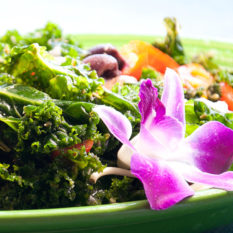 https://indoor360.com/wp-content/uploads/2014/04/slider_treehuggers_salad.jpg